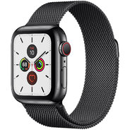 Apple Watch Series 5 40mm GPS+LTE Space Black Stainless Steel Case with Space Black Milanese Loop (MWWX2)