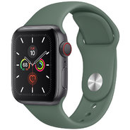 Apple Watch Series 5 40mm GPS+LTE Space Gray Aluminum Case with Pine Green Sport Band